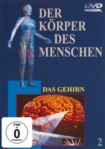 Das Gehirn,DVD 2