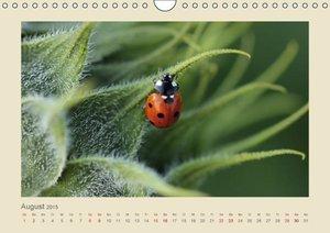 Hultsch, H: Das ganze Jahr Glück (Wandkalender 2015 DIN A4 q