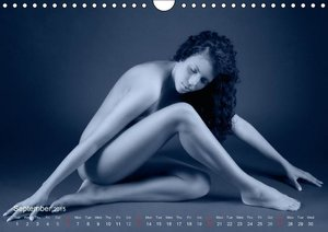 L´heure bleue - The Blue Hour (Wall Calendar 2015 DIN A4 Landsca