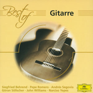 Best Of Gitarre