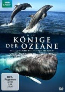 Die Könige der Ozeane