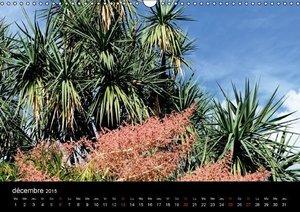 Le jardin exotique du Rocher (Calendrier mural 2015 DIN A3 horiz