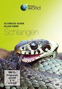Alles über Schlangen