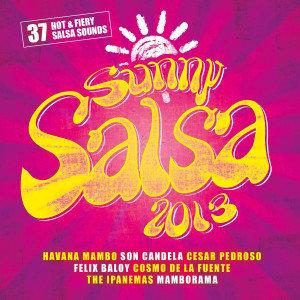 Sunny Salsa 2013