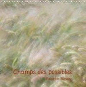 Champs des possibles (Calendrier mural 2015 300 × 300 mm Square)