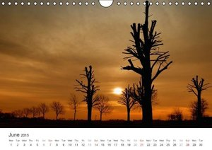 Silence Moments of tranquility (Wall Calendar 2015 DIN A4 Landsc