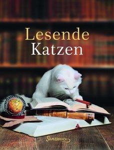 Lesende Katzen