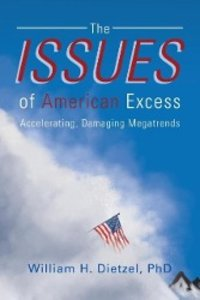 The Issues of American Excess