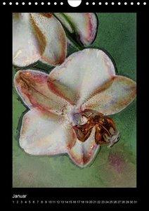 Florales (Wandkalender immerwährend DIN A4 hoch)