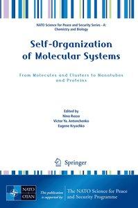Self-Organization of Molecular Systems