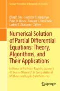 Numerical Solution of Partial Differential Equations: Theory, Al