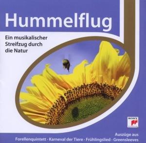 Esprit/Hummelflug