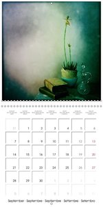 still life (Wall Calendar 2015 300 × 300 mm Square)