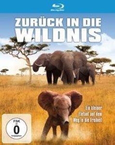 Zurück In Die Wildnis-Ein Kleiner Elefant Auf den