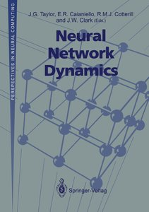 Neural Network Dynamics