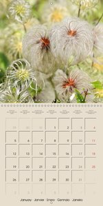 Autumn Begins (Wall Calendar 2015 300 × 300 mm Square)