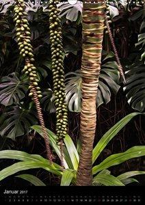 Die zauberhafte Welt der Botanik (Wandkalender 2017 DIN A3 hoch)