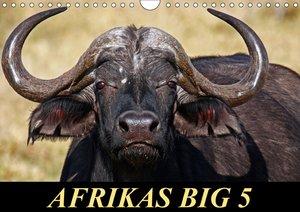 Afrikas Big 5