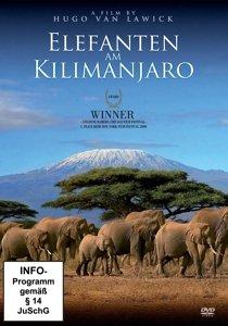 Elefanten am Kilimajaro