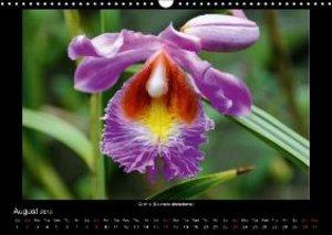 Exotic Peru (Wall Calendar 2015 DIN A3 Landscape)