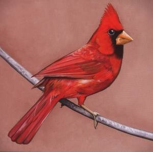 Alexisonfire: Old Crows/Young Cardinals