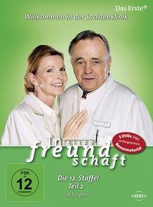 In aller Freundschaft - Staffel 12.2