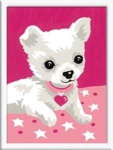 Ravensburger 29572 - Chihuahua, MNZ, Malen nach Zahlen