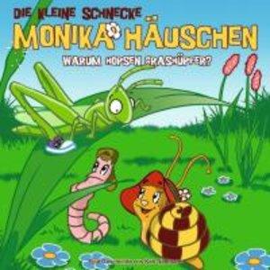 Die kleine Schnecke Monika Häuschen 11. Warum hopsen Grashüpfer?