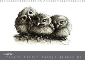 owls & friends 2017