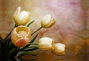 Premium Textil-Leinwand 45 cm x 30 cm quer romantic spring