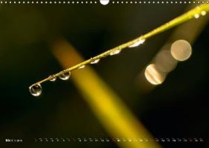 The world of drops (Wall Calendar 2015 DIN A3 Landscape)