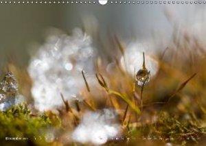 The world of drops (Wall Calendar 2015 DIN A3 Landscape)