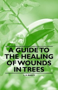 A Guide to the Healing of Wounds in Trees