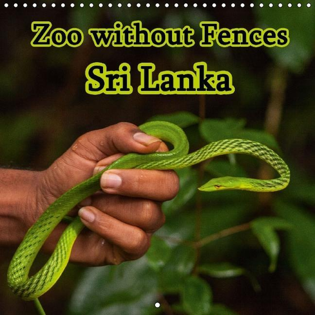 Zoo without Fences - Sri Lanka (Wall Calendar 2015 300 &times 30 - zum Schließen ins Bild klicken