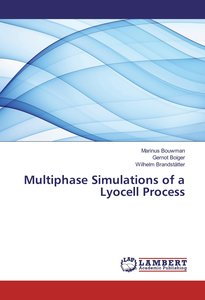 Multiphase Simulations of a Lyocell Process