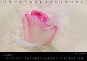 Blütenromantik (Tischkalender 2016 DIN A5 quer)