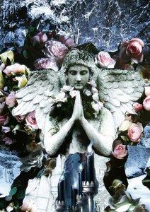 Pfeifer, Y: Angels (Posterbuch DIN A4 hoch)