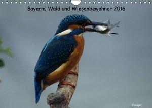 Bayerns Wald und Wiesenbewohner 2016 (Wandkalender 2016 DIN A4 q