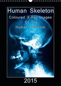 Human Skeleton (Wall Calendar 2015 DIN A3 Portrait)