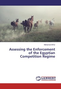 Assessing the Enforcement of the Egyptian Competition Regime