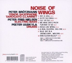 Noise of Wings