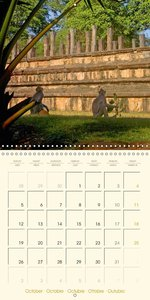 SRI LANKA: Pearl of the Indian Ocean (Wall Calendar 2015 300 × 3
