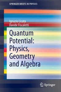 Quantum potential: Physics, Geometry and Algebra