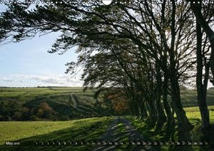 Wild Beauty of Cumbria (Wall Calendar 2015 DIN A3 Landscape)