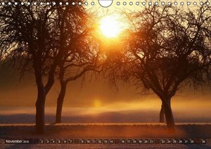 Wonderful Trees / UK-Version (Wall Calendar 2015 DIN A4 Landscap