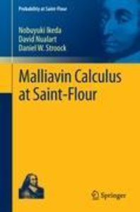Malliavin Calculus at Saint-Flour