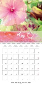 Flowers all year (Wall Calendar 2015 300 × 300 mm Square)