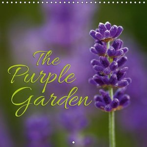 The Purple Garden (Wall Calendar 2015 300 × 300 mm Square)