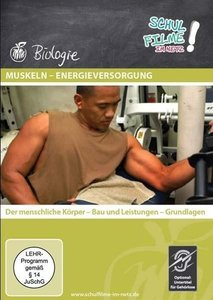 Muskeln - Energieversorgung