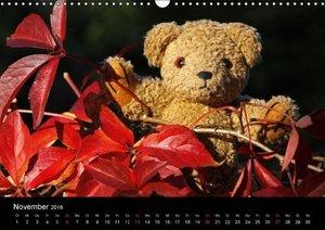 KramBam und seine bärigen Freunde (Wandkalender 2016 DIN A3 quer